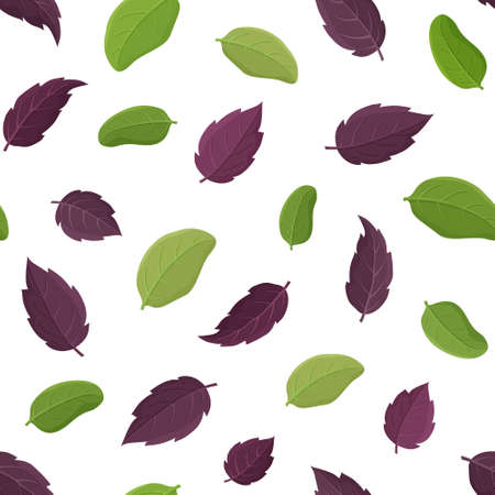 Seamless herb vector pattern. Cartoon hand drawn basil leaf on white background. Flat illustration for fabric, textile, wallpaper, napkins. Isolated leaves of green and purple plant. Floral design