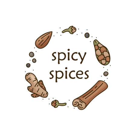 Round doodle template of spicy spices. Color cartoon cinnamon, ginger, cardamom, clove, almond, black pepper. Hand drawn vector food concept. Line art isolated illustration for card, poster, banner Ilustracja
