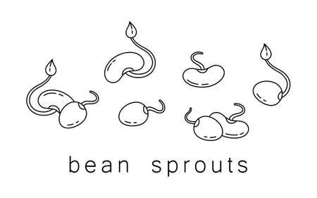 Insieme dell'icona di germogli di soia. Logo al tratto sottile di fagioli germogliati, soia e piselli. Illustrazione semplice nera. Contorno immagine vettoriale isolato su sfondo bianco. Cibo naturale sano per vegano