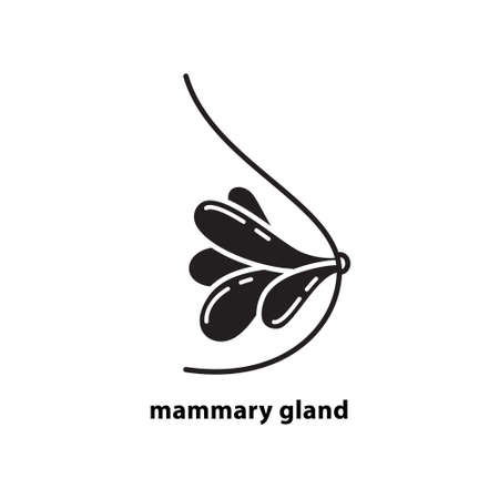 Cutout silhouette mammary gland icon. Outline template for logo for breast cancer. Black and white simple illustration. Flat isolated vector image on white background for medical surgery clinic 일러스트