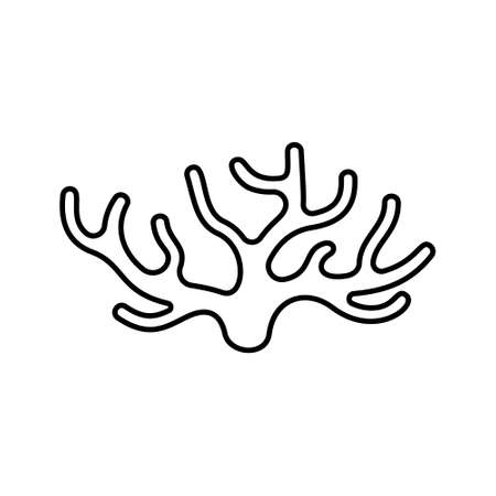 Spongilla icon. Linear  of seaweed. Black simple illustration of coral, water plant or wooden driftwood. Contour isolated vector emblem on white background