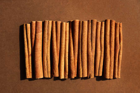 Cinnamon on brown background. Cassia sticks, alternative to real spice for dishes, coffee, cocoa. Monochrome chocolate color. Natural organic plant. Banner with texture. Hard sunlight trend, flat lay
