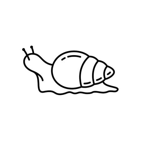 Snail icon. Linear of Achatina. Black simple illustration of big mollusk, agricultural pest. Contour isolated vector on white background. Emblem for cosmetics with snail mucus extract