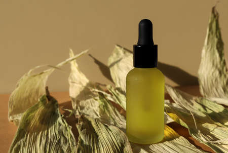 Cosmetic oil bottle, black cap pipette on green dry leaves. Monochrome mockup, banner, poster. Glass frosted vial of natural organic lotion, herbal essence, serum, emulsion. Frontal view, dark moody