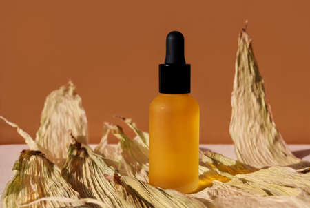 Dropper oil bottle on textured dry leaves. Horizontal template for mockup, banner, poster, frontal view. Terracotta brown colors. Glass frosted vial of natural organic lotion, essence, serum, emulsion