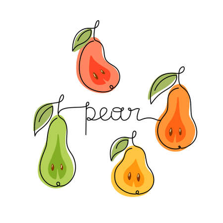 Pears, square poster. Color drawing with black one continuous line. Stylized hand drawn illustration of garden fruits, lettering. Thin linear isolated vector, white background 向量圖像