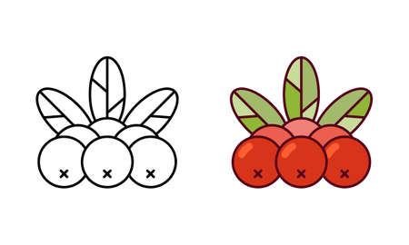 Rowan . Linear icon and color version. Black simple illustration of rowanberry, plant. Contour isolated vector pictogram on white background