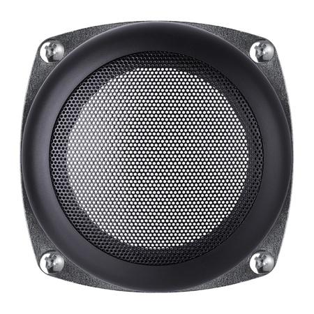 netty: mesh of the speaker on a white background