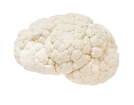oblongata: Cauliflower in the form of the human brain on a white background