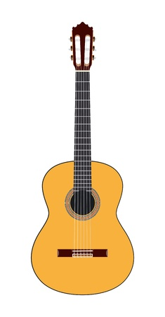 Acoustic guitar illustration  Vector