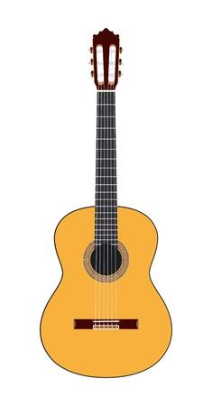 fretboard: Acoustic guitar illustration