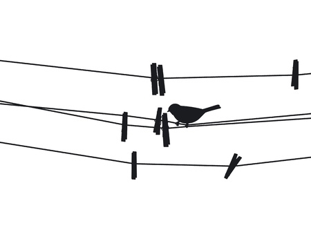 Bird sits on a rope next to the clothespins illustration