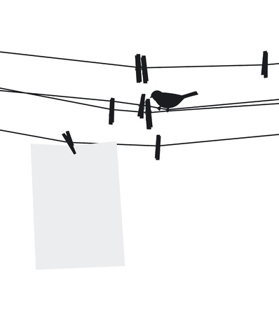 Blank paper sheet on clothesline with clothespins and bird  illustration