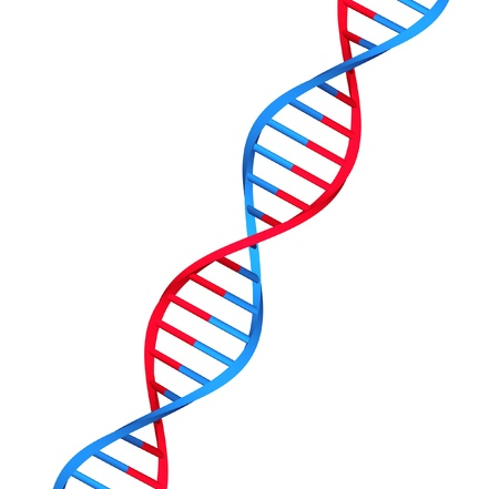 molecule dna on white background Stock Photo - 18440794