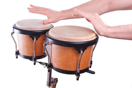 bongo drum: bongo