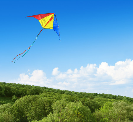 Kite flying in the sky over the forest