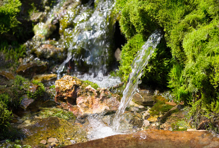 春の水の源 写真素材