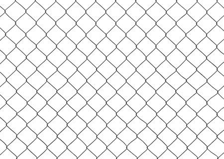 rabitz: fragment of the mesh netting on the white background