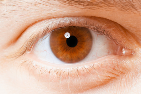 ojo humano: Ojo humano cerca