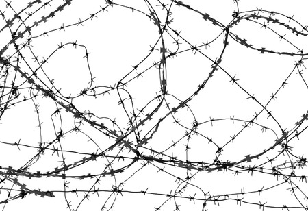 isolation: Barbed wire on white background