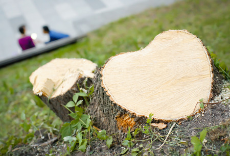cut of a tree in the shape of a heart, in the background man and woman