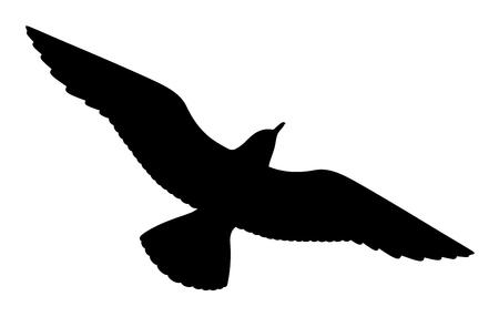 Sagoma di gabbiano su sfondo bianco, illustrazione vettoriale