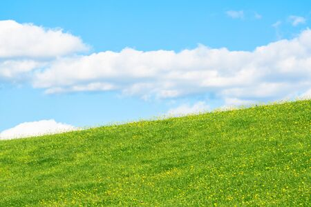 Field or the hillside with grass and flowers on a background of blue sky with the clouds       Stock fotó