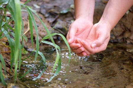 hands draw water from the spring Reklamní fotografie