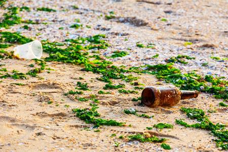 empty bottle on the sand among the seaweed on the seashore