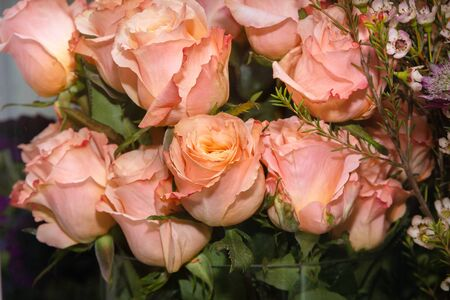 Blooming roses close-up in a refrigerator in a shop window. Concept buying flowers for a wedding celebration or a holiday