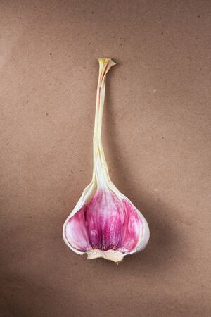 fresh garlic on paper background. natural antiseptic and protection against viruses and diseases