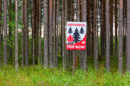 Poster in a pine forest with the inscription in Russian: come Back and put out the fire. Warning of the danger of fires in the nature 版權商用圖片