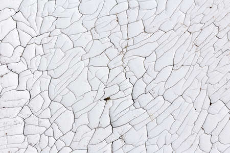 Old, cracked white paint with whimsical abstract patterns. Use as a backdrop for design and decoration