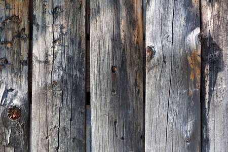 Gray wide, nailed planks of the old wooden barn wall. Natural background for text and design