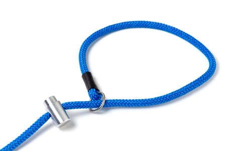 Controller leash loop with lock for dog training and education