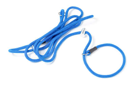 Leash controller with loop noose and limiter. An effective remedy for raising dogs for obedience and endurance