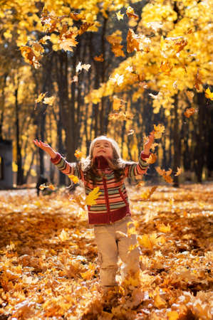 Little happy girl in a striped sweater, walks in autumn park throws up fallen maple leaves
