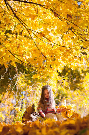 Little girl dreaming sitting on a log in the autumn park with a bunch of yellow maple leaves in hand Banque d'images