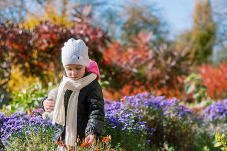 Little girl walks in the autumn colorful garden. He holds a soft toy in one hand touches the flowers with the other hand. Banque d'images