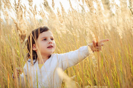 Little girl plucks a spikelets grass in the field, and puts his hand Banque d'images