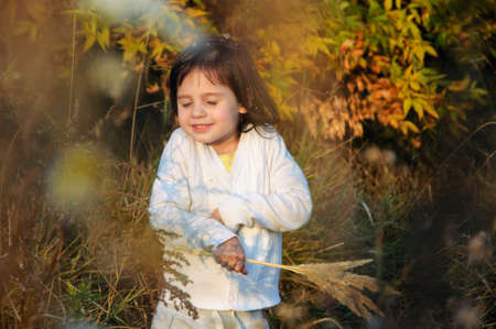 little happy girl basking in the rays of the setting sun, and holds broken spikelets grass in his hand Banque d'images