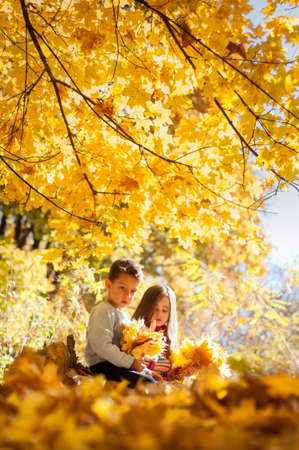 Pensive kids sittin on a log in the autumn park with a bunch of yellows maple leaves in hands