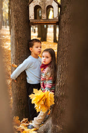 pensive kids stand between two trees, girl holds bunch of yellows maple leaves in hand, boy hugged a tree Banque d'images