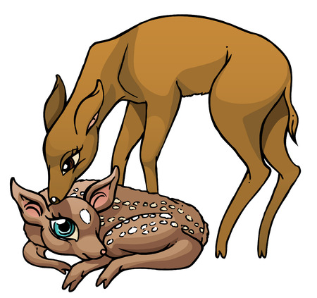 sniffing: Illustration of baby deer with its mother