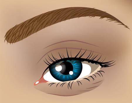 Vector illustration of a human eye