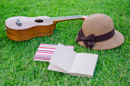 brown ukulele lying on meadow with lovely hat and notebook. Stock Photo