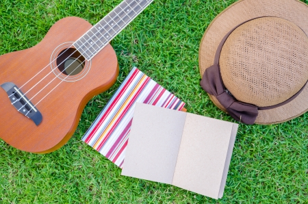Closeup brown ukulele lying on meadow with lovely hat and notebook.