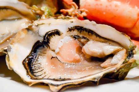 foodies: Juicy Oyster