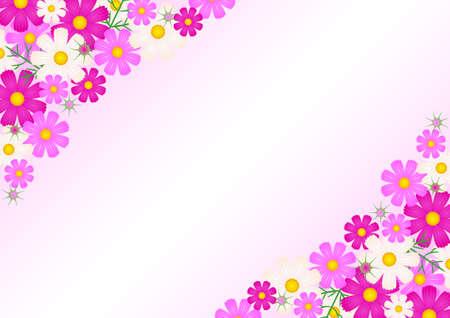 Cosmos flower - background  イラスト・ベクター素材