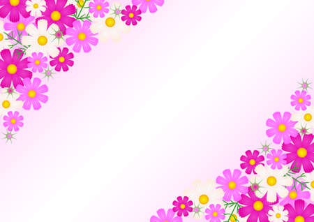 florets: Cosmos flower - background Illustration